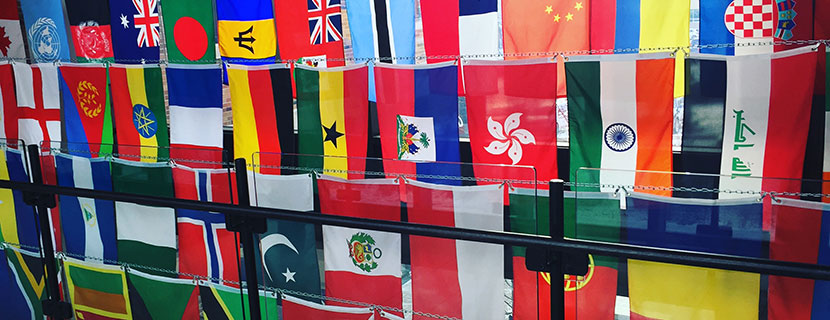 Flags in SC Johnson video