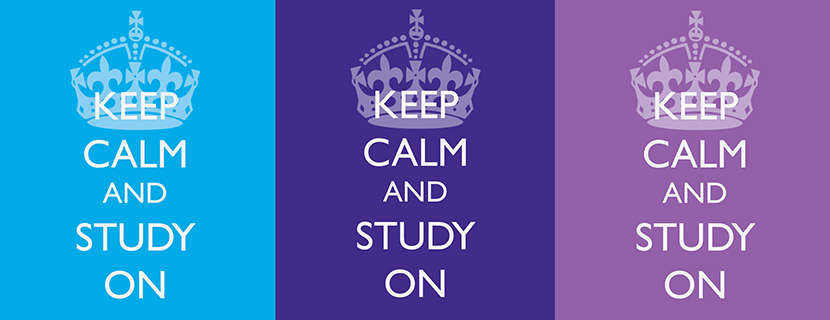 keep calm and study on graphic