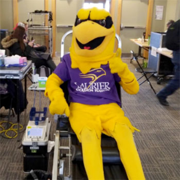 hawk donating blood